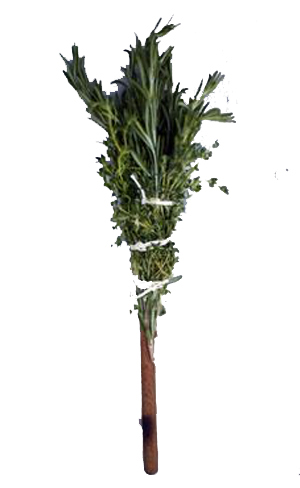 V1 Herb Brush