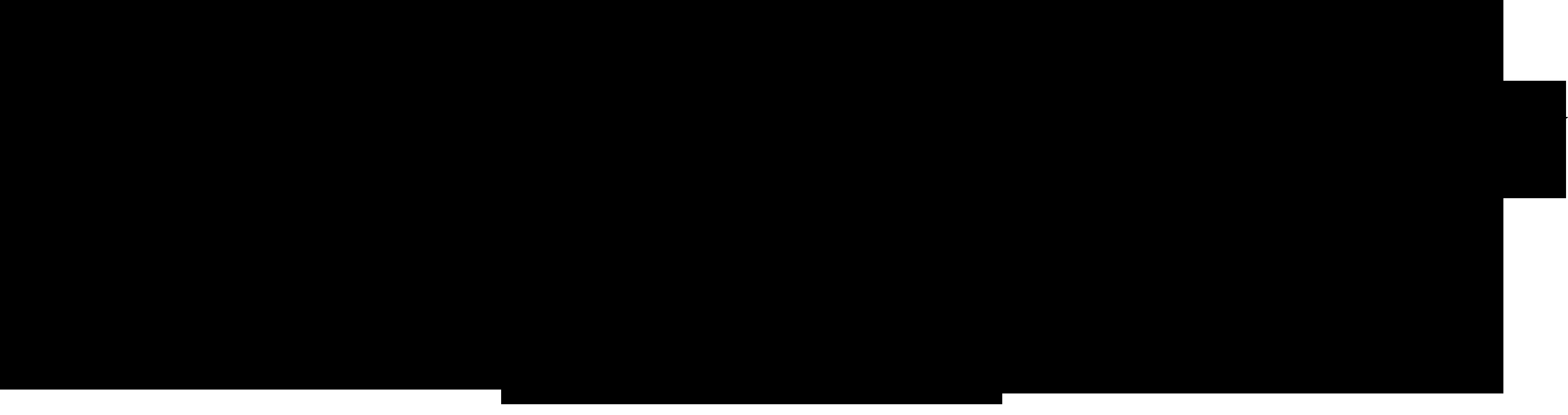V1 Holysmoke BLACK